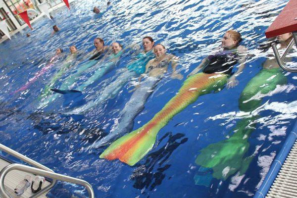 Wir suchen Meerjungfrauentrainer in Deutschland