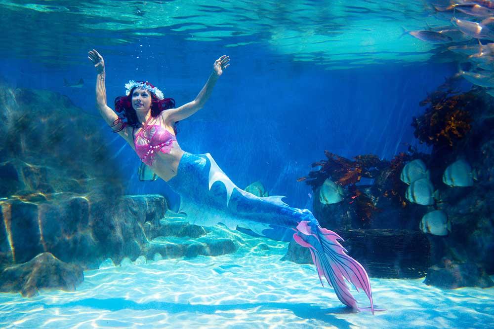Katrin Gray ist von Beruf Meerjungfrau und Unterwassermodel