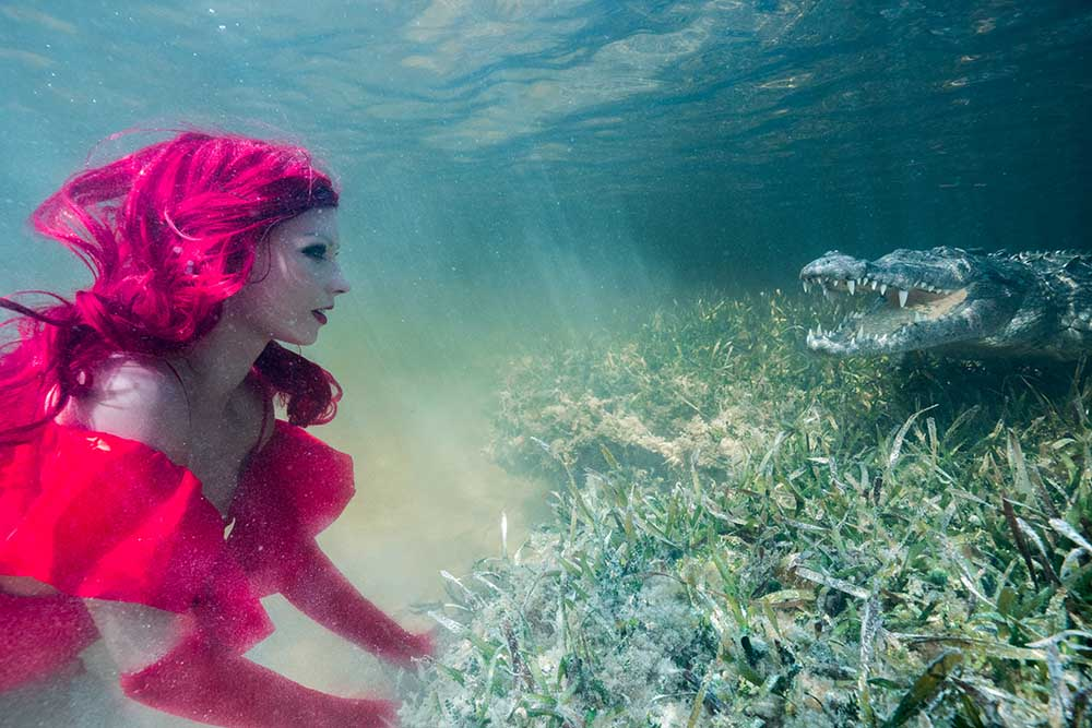 Unterwassermodel Katrin Gray posiert neben einem Krokodil