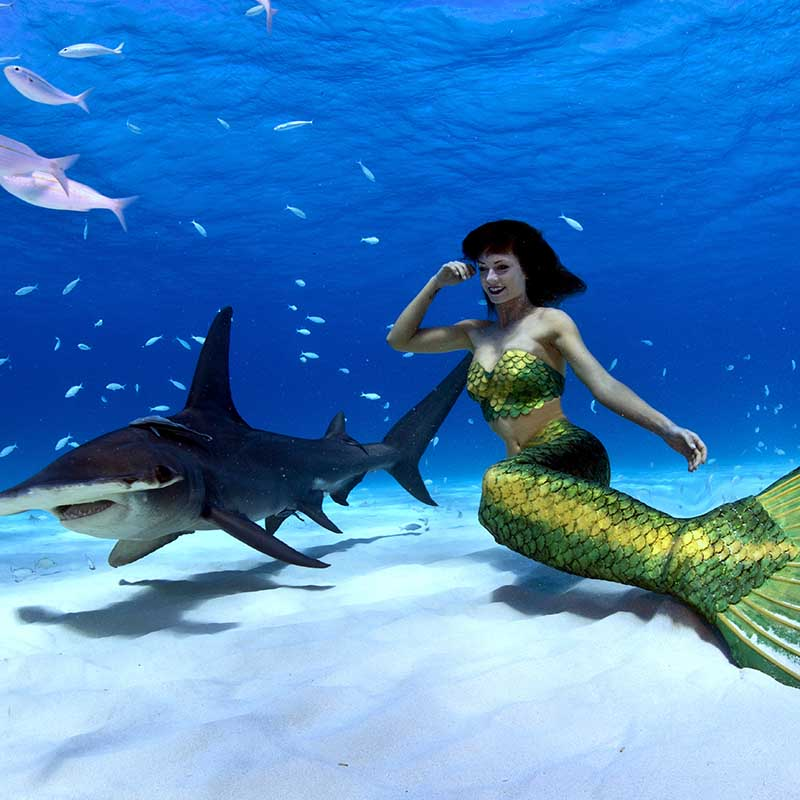 Professionelle Meerjungfrau und Unterwassermodel Mermaid Kat
