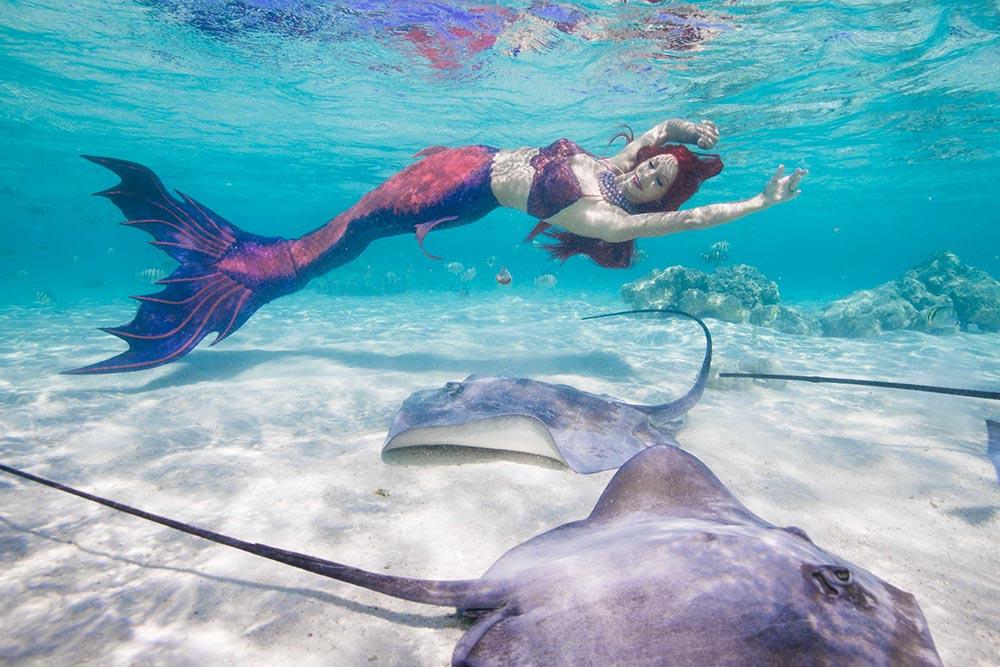 Meerjungfrau Mermaid Kat schwimmt mit Rochen