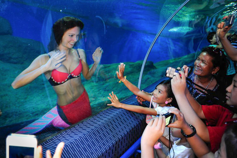 Merjungfrauen Entertainment im Aquarium